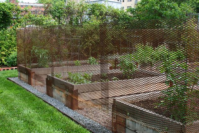 3_veggie_garden_fencing