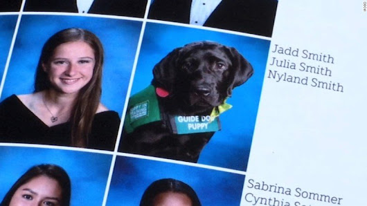 Service Dog Joins Foster Mom In Yearbook - WCCB Charlotte