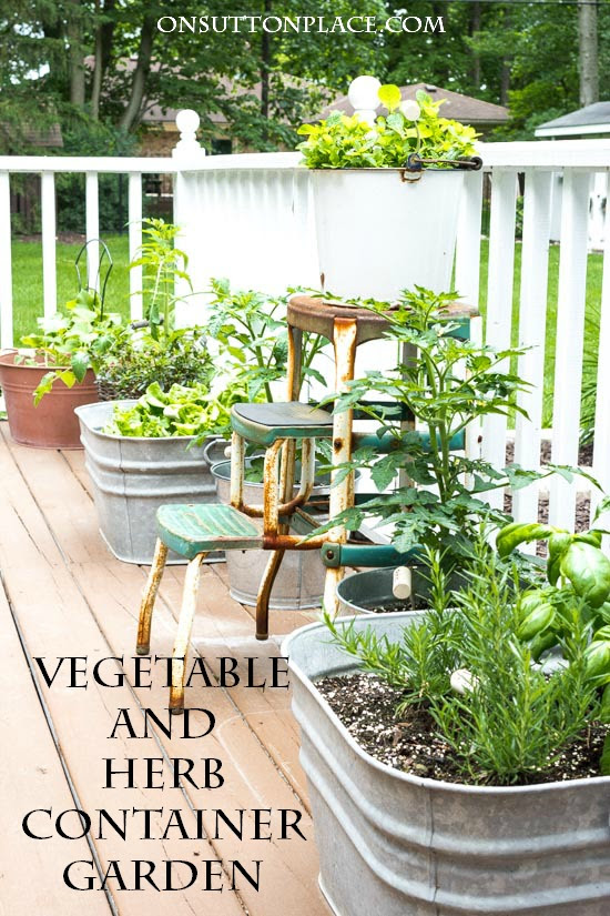 Easy Container Gardening with Vegetables and Herbs - On Sutton Place - HMLP 93 - Feature