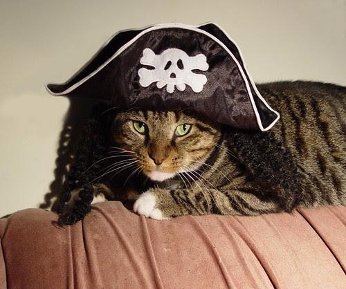 Bobi pirate