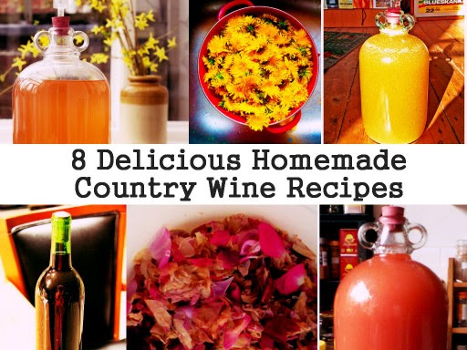 8 Delicious Homemade Wine Recipes | How To Instructions