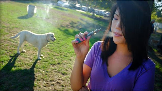 Secondhand smoke as harmful to pets as people