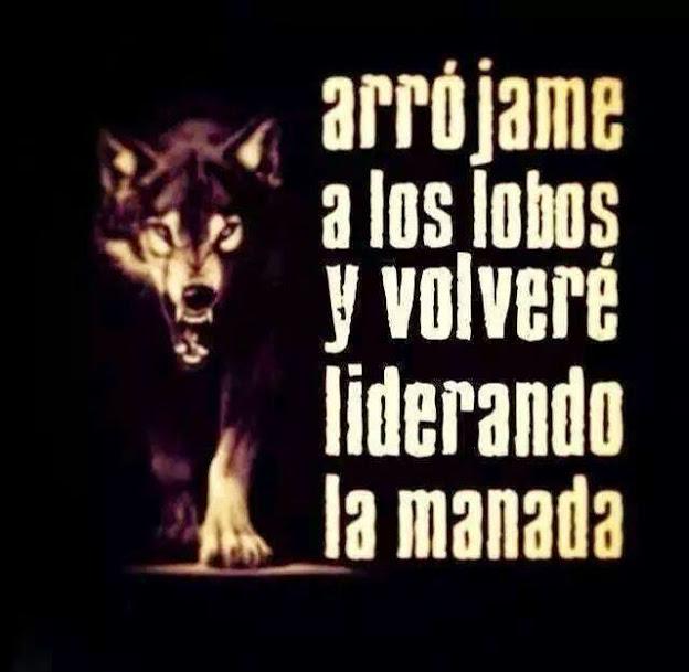 Frase Del Día Arrójame A Los Lobos Y Volveré Liderando La Manada