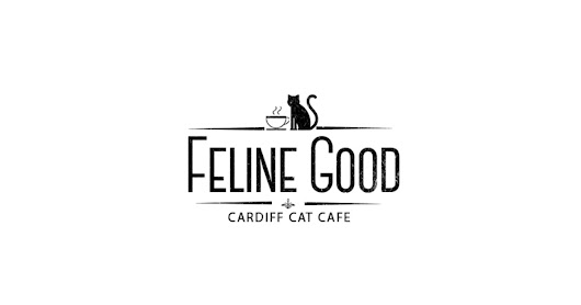 CLICK HERE to support Feline Good - A Cat Café For Cardiff, Wales