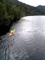 Kayaks on the Gordon River