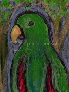animal, parrot, art card, original, abstract,original aceo,animal art,bird painting,eclectus parrot,male ecelctus,collectable art,abstract art,millermodernart,pmillerabstractart,painting giclee prints art original pmiller buy