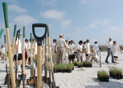 Coastal & Shoreline:  Gulf of Mexico | NRCS Plant Materials Program