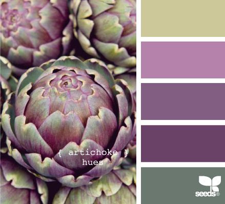 artichoke hues - don't know who does the picture/color combo work at design-seeds.com, but they are spot on every time.  I love the way my eyes start looking to see how each of the colors are used in the attached pictures . . . brilliant work.