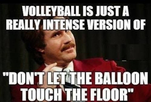 volleyball comic, anchorman meme, anchorman volleyball, volleyball balloon game