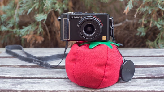 Heirloom: The World's First Tomato for Cameras