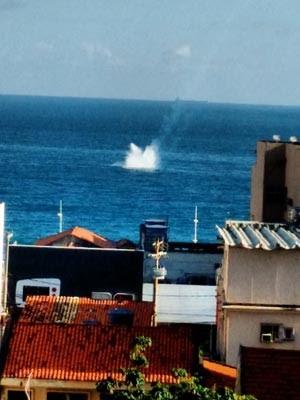 Avião caiu no mar durante apresentação de esquadrilha (Foto: Darlan Azevedo/Arquivo pessoal)