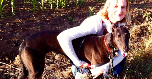 Meet the therapist who helps pet owners get over the grief of losing their animals