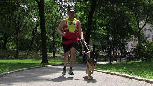 Blind Marathon Runner Paired With First Guide Dog Trained to Jog - American Kennel Club