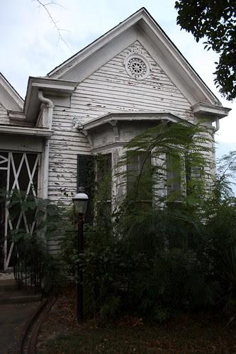 brown-birdsong house