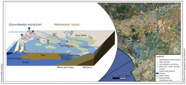 <p>Dibujo esquemático de los humedales del Parque Nacional de Doñana y principales amenazas asociadas. Destacan los impactos de la extracción de agua subterránea para cultivo de fresas (en rosa), uso urbano, y fuentes puntuales de nutrientes procedentes de plantas de depuración aguas residuales / UAM</p>