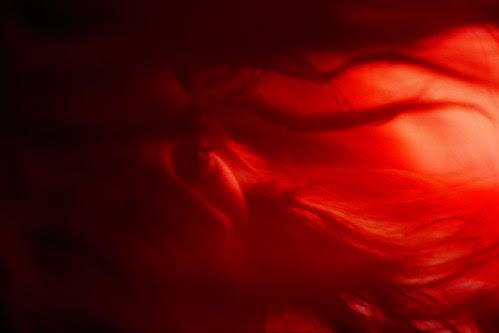 saray en rojo