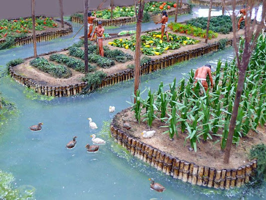 Chinampas: Artificial Islands Created By The Aztecs To Improve Agriculture | MessageToEagle.com