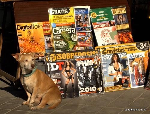 El guardián de las revistas