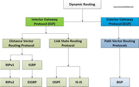 introduction  routing protocols network chef bd