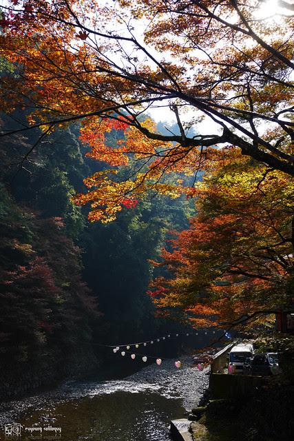 Panasonic_GX7_Kyoto_20