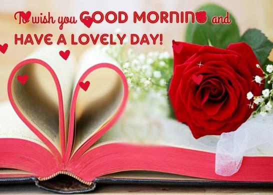 Beautiful Rose For My Beautiful Love Free Good Morning Ecards 123
