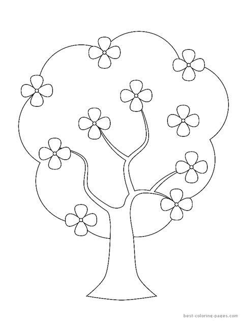 Magnolia tree branch Royalty Free Vector Image | 631x474