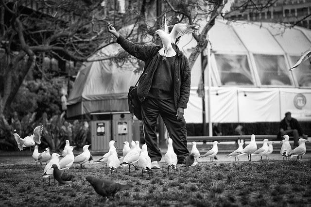 <<The Birdman>>