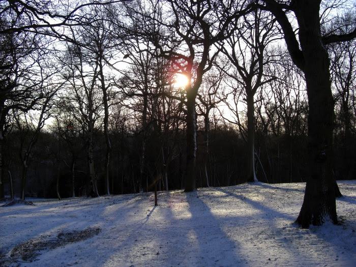 Cold winter scene