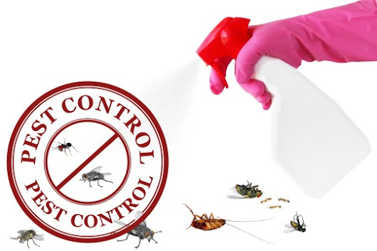 CHOOSING A PEST CONTROL COMPANY TIPS