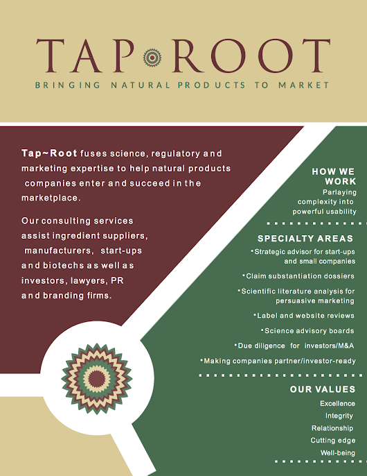 New TapRoot Brochure