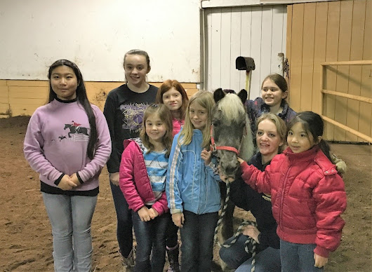 New Horse Club Gallops into Full Stride!