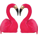 Swimming Flamingo Hat, (Pack Of 2) One Size Pink