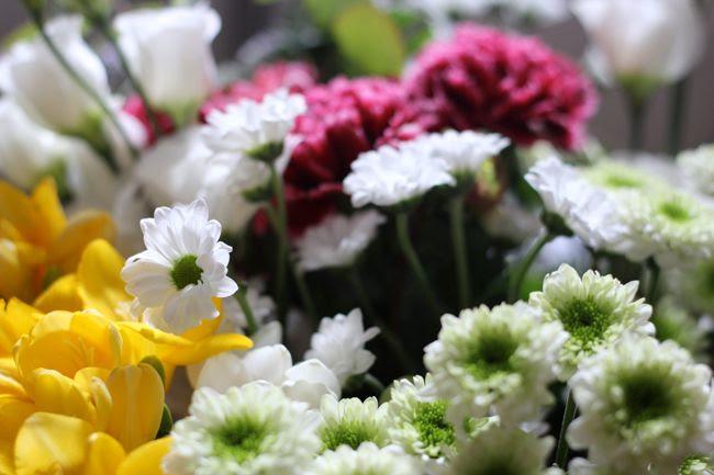 photo 3-fleurs-joiedesfleurs-vase_zps300d2709.jpg