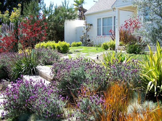 English Garden, California Style - Traditional - Landscape - los angeles - by BE Landscape Design