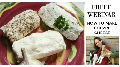 How to make Chevre Cheese