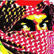Muslim institute 'training girls for jihad', Mumbai Police memo reveals - The Times of India