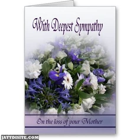 Sympathy Pictures, Images   Page 3