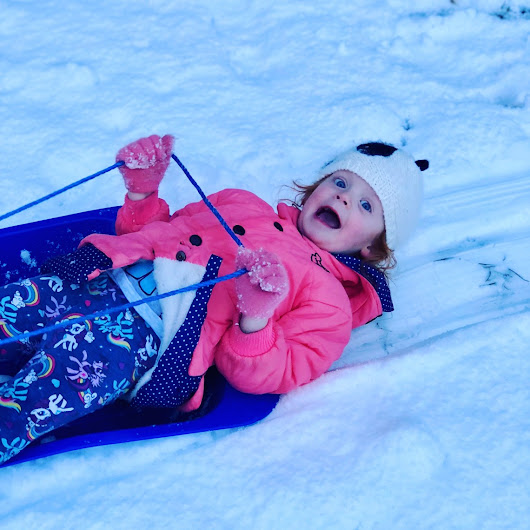 Snow, Snow And Snow – Our Weekly Photos Week 3
