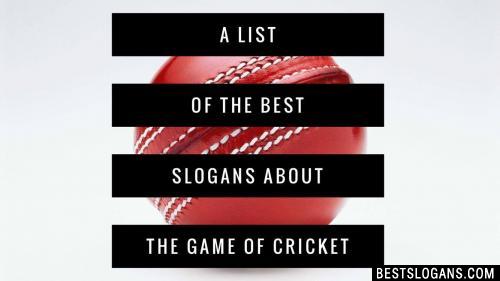 30 Motivational Cricket Slogans Sayings Mottos 2019 Inc Funny