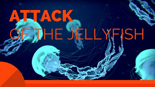 Attack of the Jellyfish