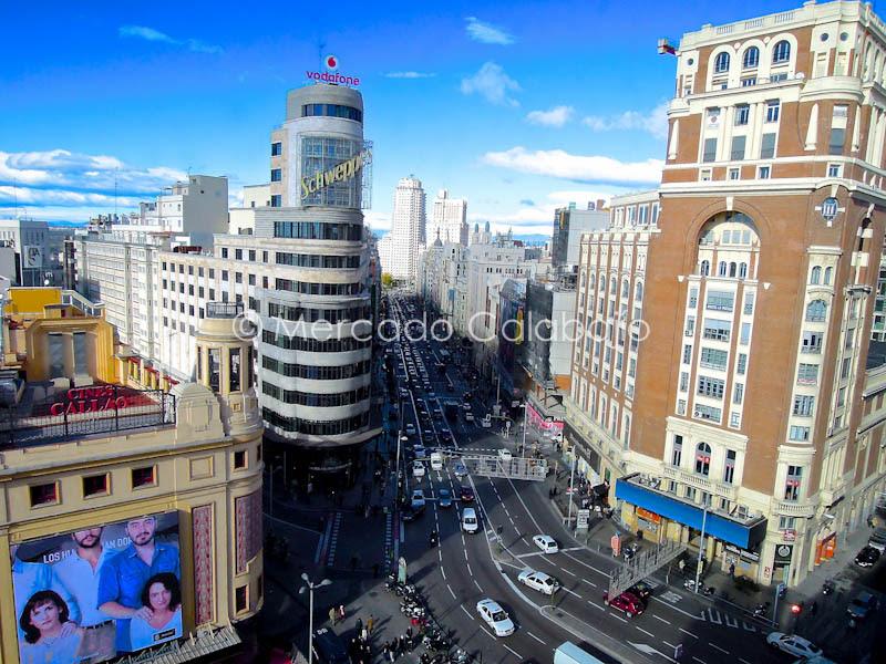 PASEO MADRID NOV2012-2