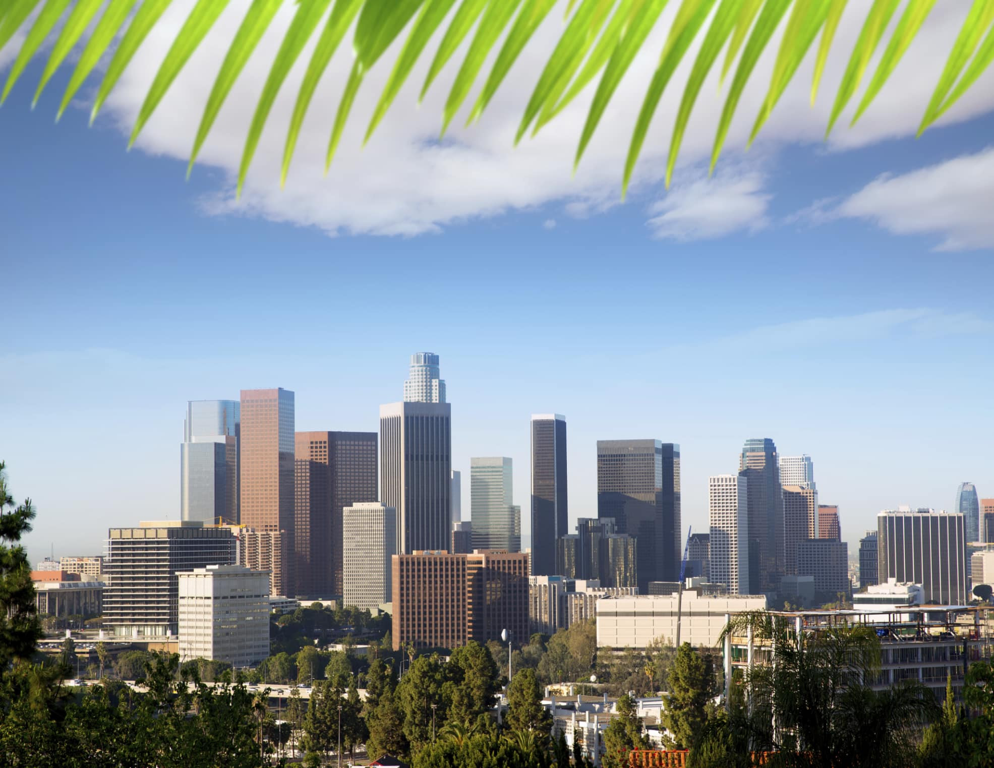 Business in Los Angeles and the Need for Translation ...
