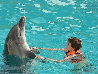 clem et dauphins.jpg