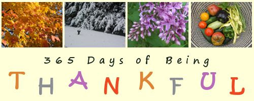 by AngieOuelletteTower for godsgrowinggarden.com photo Thankful_zpsd6bc7c2d.jpg