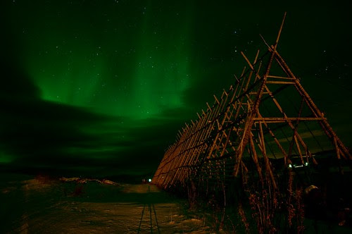 Northern Lights at fish drying racks in Torhop
