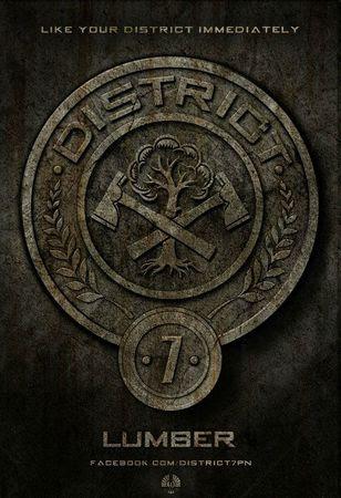 Hunger-Games-affiche-District-7