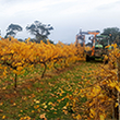 Emmetts now serving customers in the Fleurieu Peninsula, South Australia