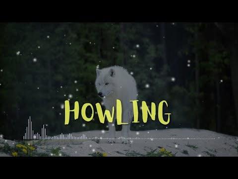 Video Lirik Kinetic Typography - CARTOON - Howling (Ft Asena) Lyrics Video
