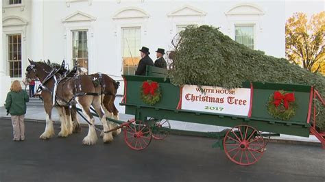 Barron and Melania Trump Welcome White House Christmas
