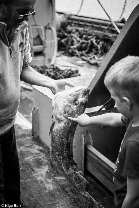 Nige Burr deu a sua imagem de um menino que examina um peixe o título incomum, Atlantic Cod Filho: a que custo, tomada em Newlyn, Cornwall